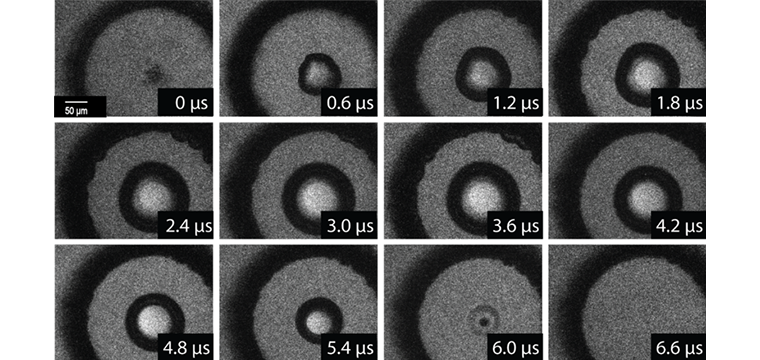 Image sequence recorded using a high-speed camera showing gel response following a converging shock wave.  Microbubbles form within the first 10 ns and coalesce into a larger cavitation bubble which persists for approximately 6 μs before collapse.