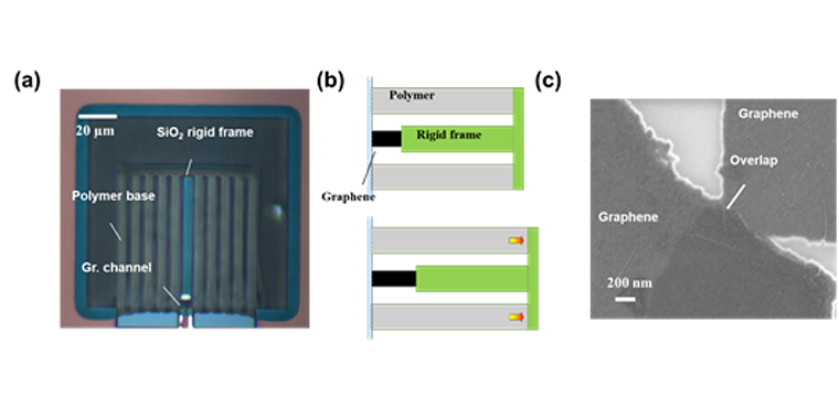(a) Microscopic image, and (b) schematic of the new graphene-polymer thermo-mechanical bolometer developed in this project. (c) Scanning electron microscopic (SEM) image of the percolative graphene film, indicating an overlap region of around 50 nm.