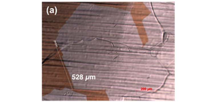 (a) Optical Microscope image of as-grown CVD graphene on copper foil showing the single crystalline grain size of >500um.