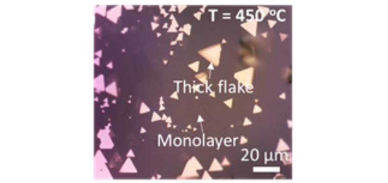 (f) Optical microscope image of our CVD grown TiS2 flakes on Mica (triangular, synthesized under 450C).