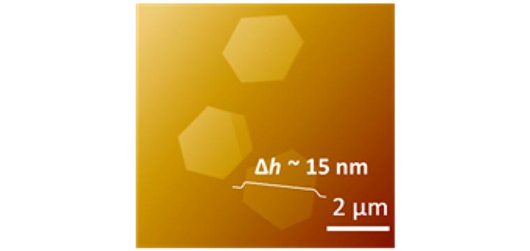 (g) AFM image of the TiS2 flakes (hexagonal, synthesized under 600C).