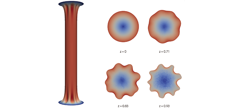 Simulations and experiments of elastic instabilities in confined hydrogel layers under tension: fringe instabilities